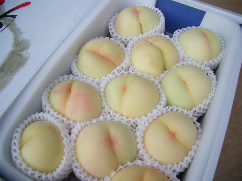 特選清水白桃【3kg】贈答用の画像