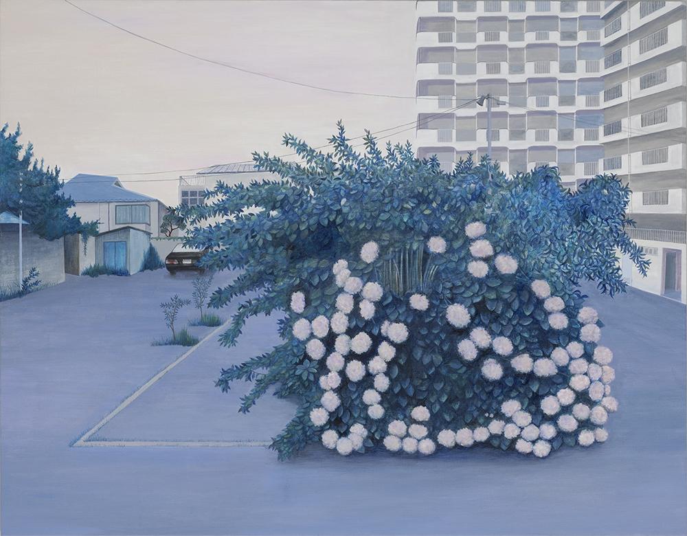 04. 大きなあじさいの木の画像