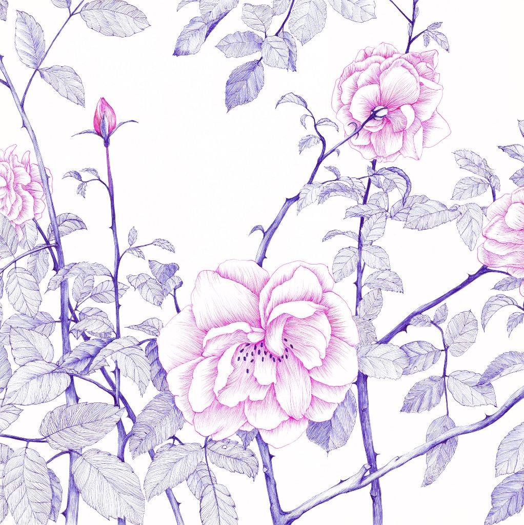 05. バラと海の香りの画像