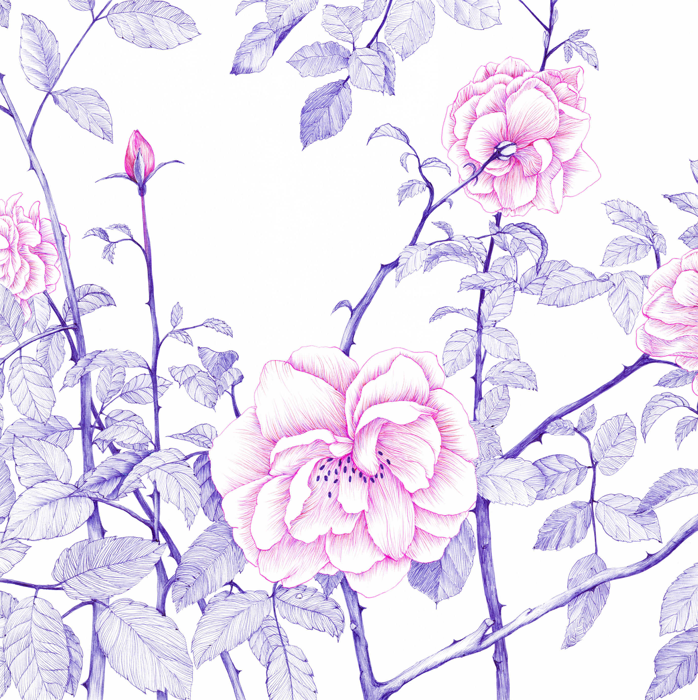05. バラと海の香り画像