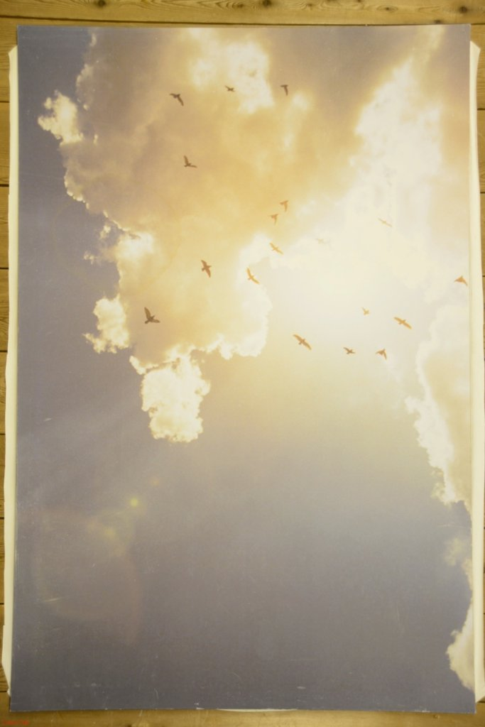 SKYの画像
